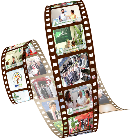 Image result for Promotional films